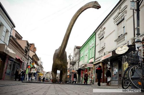 dinosaurusi misa